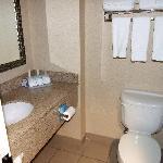 Foto de Holiday Inn Express Hotel & Suites Toronto - Mississauga