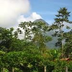 View of Volcano Arenal from Hotel