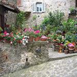 Garden in Anghiari