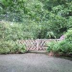 Hare Hill garden.