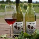 Milcrest Estate Wines