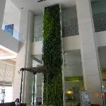 Wall garden in the lobby
