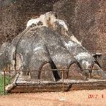 シギリアの石のライオンの足
