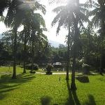 View in the morning during yoga-session