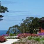 Ocean Views and Flowering Gardens