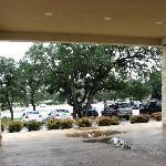 The Parking area has beautiful big oaks