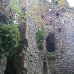 The ruins of a 1500's castle in the backyard