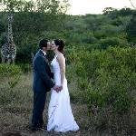 Impromptu wedding guests - the Giraffe!