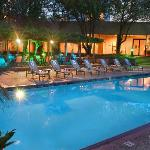 Hilton Houston Westchase Pool