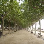 promenade sur le bord de la plage