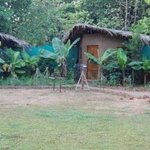 Eco Cottages at Rivertrail Eco Camp