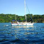 Sailing (25905188)
