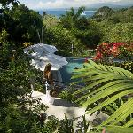 Jungle View Overlooking Family Pool