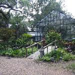 Oasis greenhouse