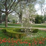Gut gepflegte Beete im Wiener Donaupark