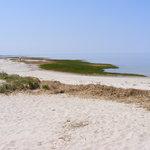 area beach