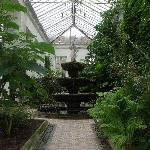 Lyme Park and Gardens,Greenhouse.