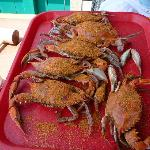 REG Steamed Crabs 1/2 doz at Ed's Crabs