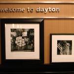 Hampton Inn & Suites Dayton-Airport Foto
