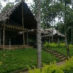 Kolli Hills resorts - Calm and peaceful location to stay