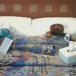 sick bears!!!
