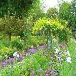 garden row