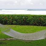 hammock between pool and private beach access