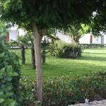 Photo of Il Venticello