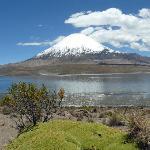 Lago Chungara & Vulkan Parinacota