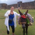 the fort, the donkey and i