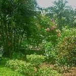 Garden Casa Ligorio