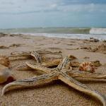 Eco Paraiso Xixim - Celestun, Yucatan, Mexico