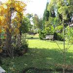 Craighall Garden Guest House Foto