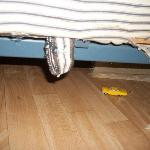 under beds after she cleaned