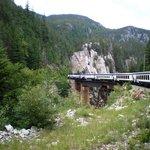 電車からの景色