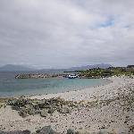 Tours of the Iniskea Islands, West Coast of Ireland