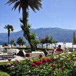 rose garden and terrace
