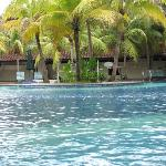The pool is very nice lots of green surroundings