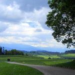 View at Gurten