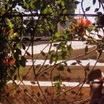 Welcoming garden entrance