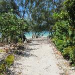 Path to beach at Flamingo Bay