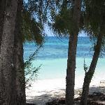 Beach at Flamingo Bay