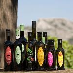 Notre gamme d'Huile d'Olives, Our range of Olive Oils