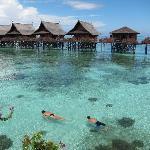Snorkeling Paradise