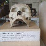 Ambangan pit grave skull