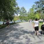 The lake/park/path across the street from Greenlake Guest House