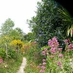 Walking along the coastal path was like walking through a beautiful private garden at times.