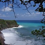 Know Jamaica Tours