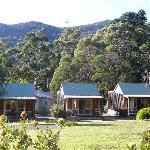 standard studio cottages