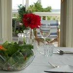 Salad from the organic Restaurant garden